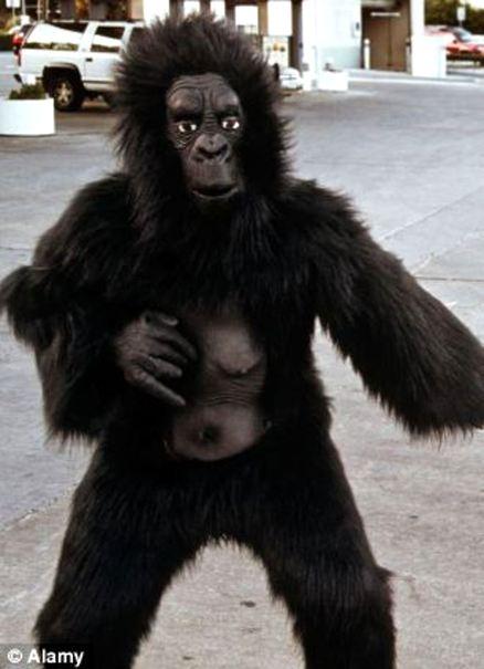 20140605_gorilla